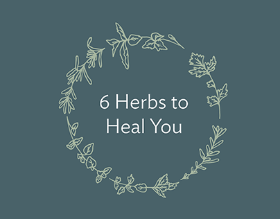 6 Herbs to Heal You