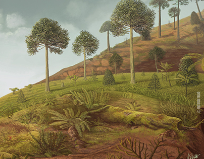 Late Cretaceous climate changes in northeastern Brazil.