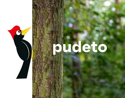 Visual identity of Pudeto