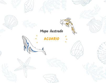 Diseño mapa ilustrado acuario_APP móvil