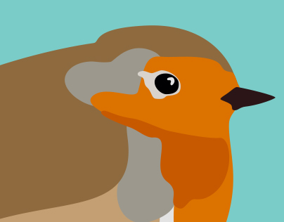 BIRD project