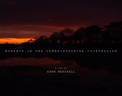 Moments In The Cambridgeshire Countryside