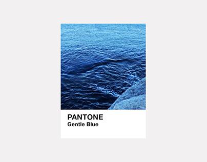 Pantone of Sydney