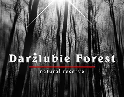 Darzlubie Forest