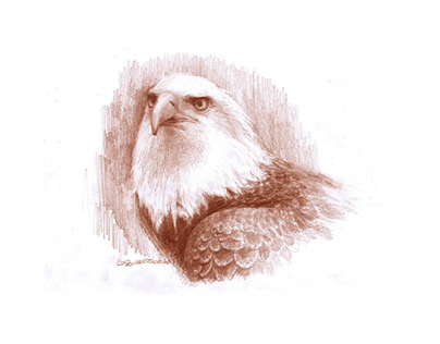 Natural Souls: Eagle