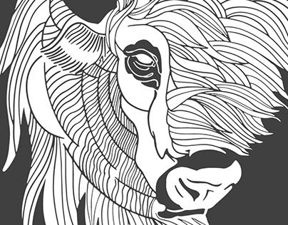Untamed Bison Branding, Website, Photography & Video