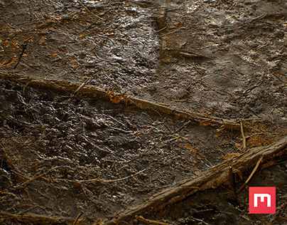 Soil Texture 02