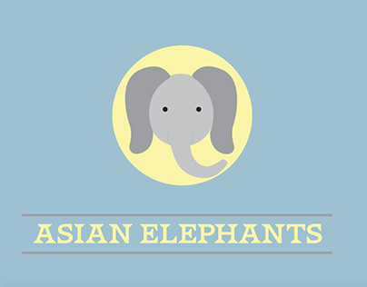 Asian Elephant Campaign