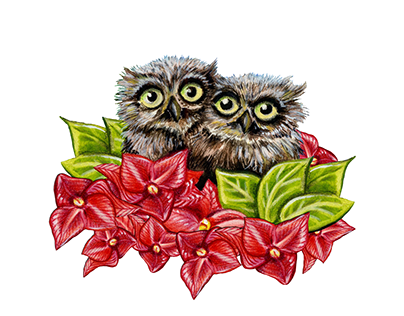 Baby Owls on a Branch - Wall Art & T-Shirt Print