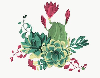 Cactus World!!