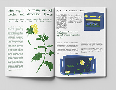 The many uses of Nettles and Dandelions