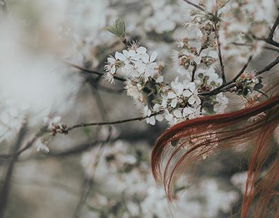 Spring | Ola
