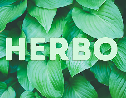 HERBO - Website Concept