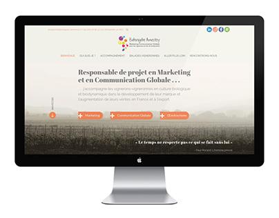 Bérangère Amestoy ~ Website design