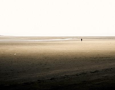 Le Crotoy : Baie de Somme