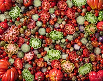 Tomates de Oaxaca
