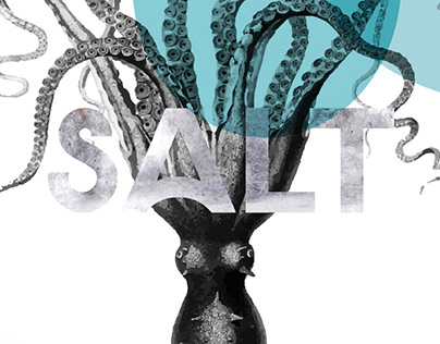 SALT - FREE CLEAN & MINIMALISTIC SANS SERIF