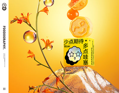 Mid-Autumn Festival月饼摄影 | Moon Cake 中秋月饼 ✖ foodography