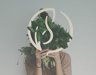 Cássia Nutricionista | Visual Identity