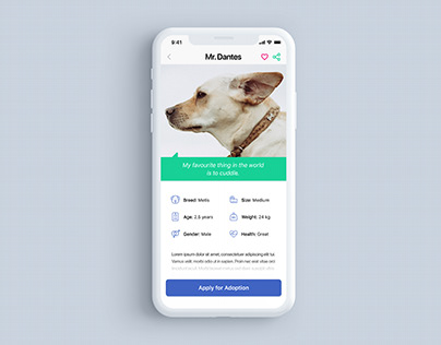 Dog Adoption App - Dog Info Screen