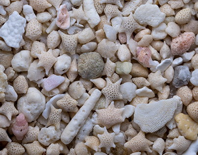 Sand from all over the world