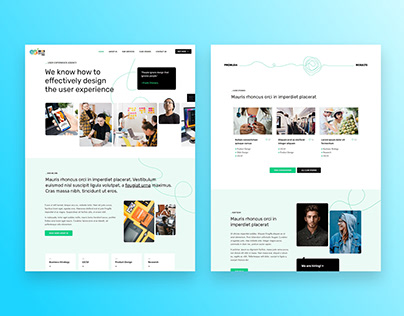 Business website & Landing Page with elementor pro