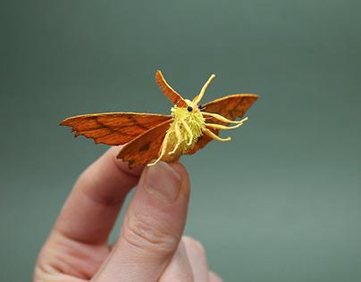 Crepe Paper Moths
