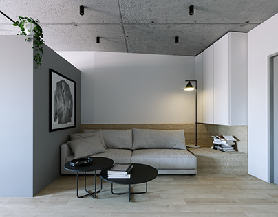 Little gray apartment