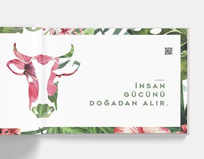 Hacıince - Katalog Tasarımı