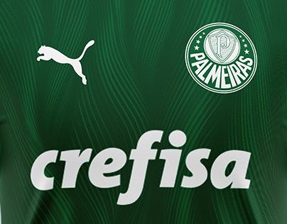 Palmeiras x Puma