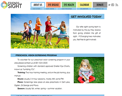 Friends For Sight Website Design