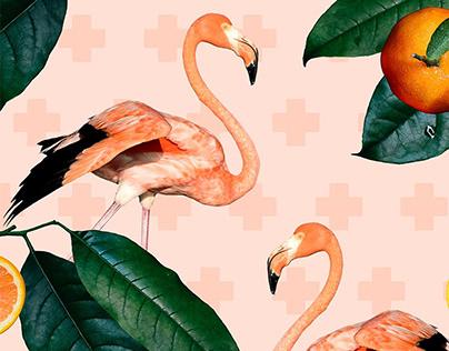 Flamingos & tangerines pattern