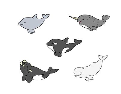 Cartoon Cetaceans - 1