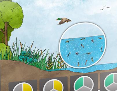 Mindfuel, Rebuilding Wetlands – Online Teaching Module