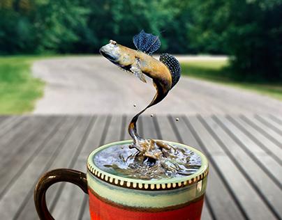 mudskipper coffee