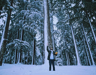Portland, OR | Snowpocalypse 2017