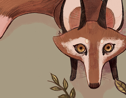 FOX FABLES // Book Illustration