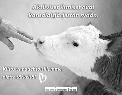 Animalia - Social Media