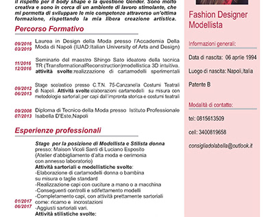 Curriculum Vitae Projects Photos Videos Logos Illustrations And Branding On Behance