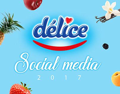 Yaourt Délice Social Media 2017