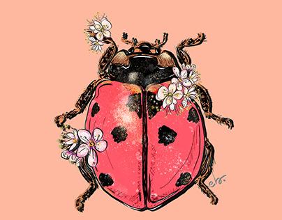 Ladybug & Blooms_digital painting