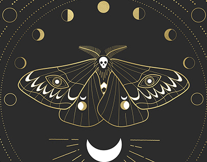 The Moon Moth