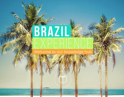 Experiência Brasil - McKinsey