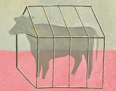 Beef-Greenhouse Effect - Editorial