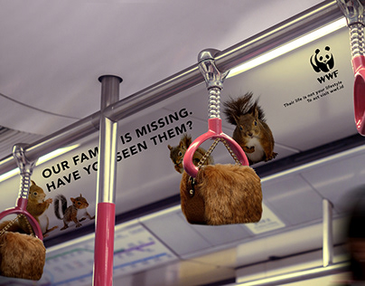 WWF - Have you seen them?