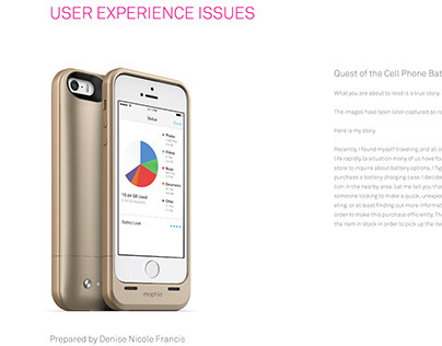 USER EXPERIENCE ISSUES  