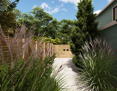 Landscaping of the terrace and backyard