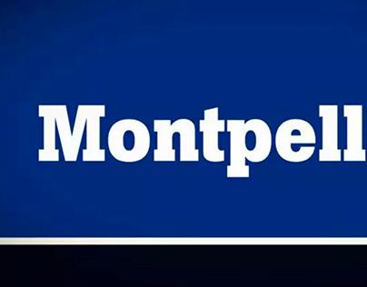 Montpellier motion
