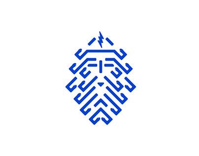 Dynamo Aquatic Club Branding