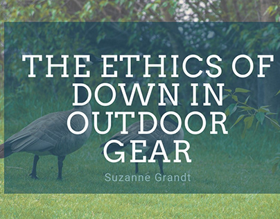 The Ethics of Down in Outdoor Gear